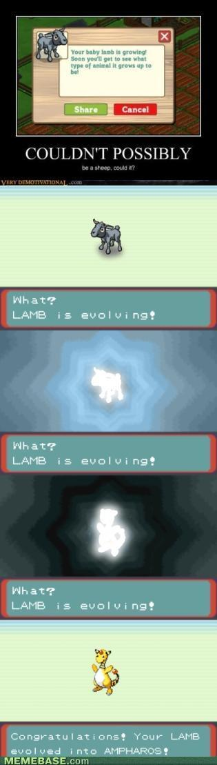 Lamb_evolution